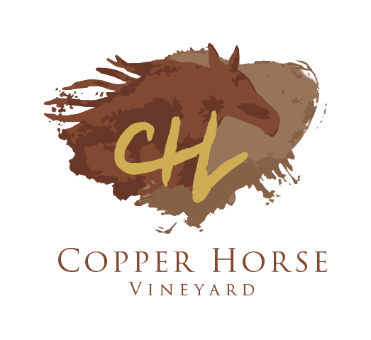 Copper Horse Vineyard - Arizona