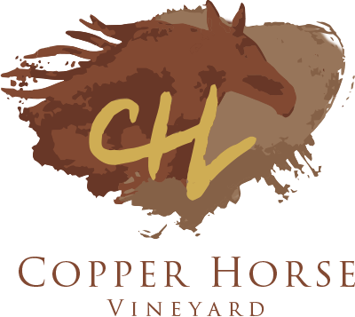 Copper Horse Vineyard Arizona